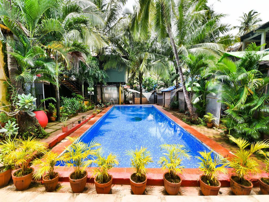 Индия, Ashvem Beach Resort 3 *, Ашвем